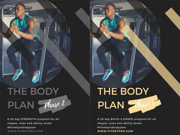 Body Plan Phases 2 and 3