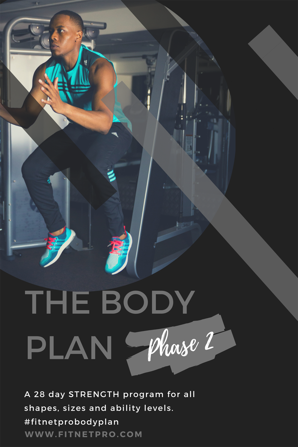 The Body Plan Cover